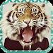 Download Animal Face 1.3.1 APK