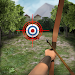 Download Archery Big Match 1.2.3 APK