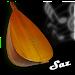 Download Baglama-Saz 2.12 APK