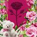 Download Beautiful Roses Photo Frames 6.0 APK