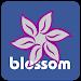 Download Blossom TV Guide 1.3 APK