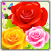Download Bubble Rose 3.0.3 APK