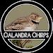 Download Calandra Chirping 1.0 APK