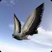 City Bird Fly Simulator 2015