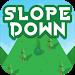 Download Kids Easy Slope Down MONT FUJI 7 APK