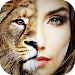 Download Face Morphing 1.1 APK