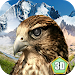 Download Falcon Bird Survival Simulator 1 APK