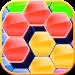 Download Hexa - block puzzle legend 1.1 APK