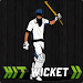 Download Hit Wicket Cricket - English County League Game 4.1.1 APK