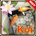 Download Koi pond 3D live wallpaper 1.2.1 APK