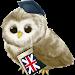 Download Learn English free 5.2 APK