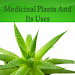 Download Medicinal Plants and Its Uses 1.0 APK