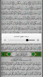 Download Mushaf Tajweed with Tafsir 5.0 APK
