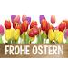 Download Ostersprüche und schöne Grüße 1.5 APK