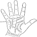Download Palmistry for All 27.09.17 APK