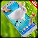 Download Rabbits in Phone | prank app 1.0 APK