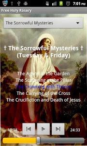 screenshot of Scriptural Rosary version 3.7