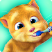 Download Talking Ginger 2.5.9.19 APK