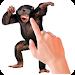 Download Tickle Talking Monkey 1.1 APK