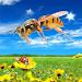 Download Wasp Survival Simulator 1.0 APK